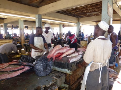 A fish market in action