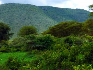 We take a different road which gives a different angle and the srubbiness of the Crater hill becomes more evident