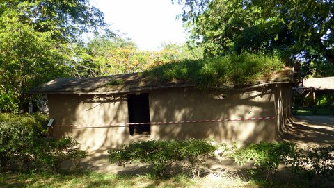 Tribal hut 3